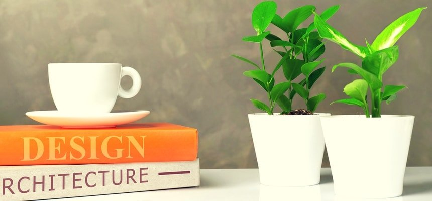 Coffee table books with plants