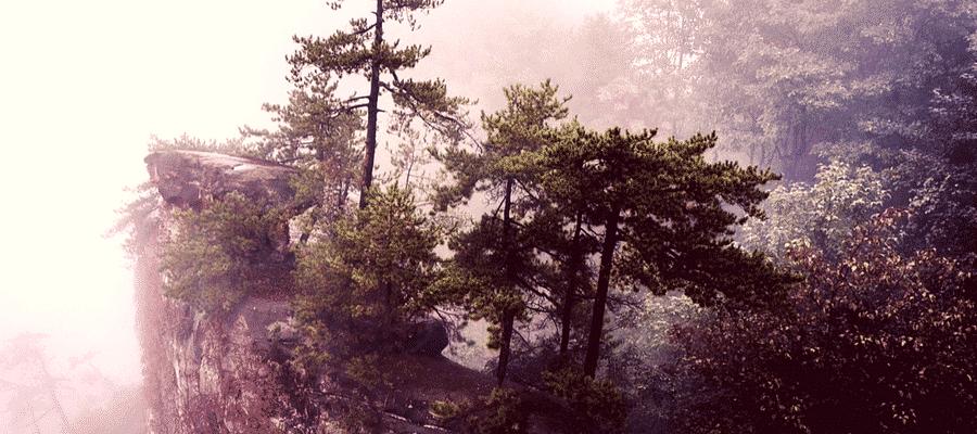 Zhangjiajie National Park, China misty