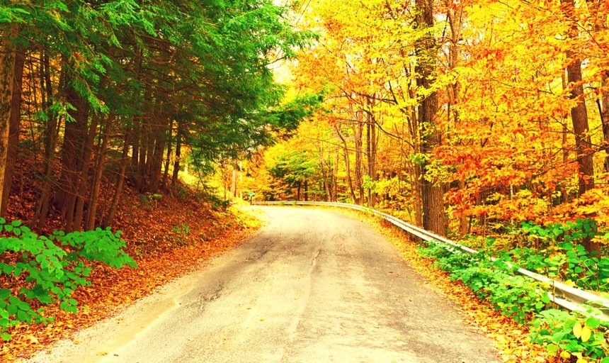 Road in autumn winding corner