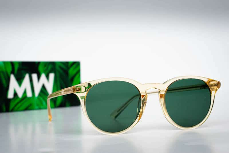 new depp sunglasses with green case on white background