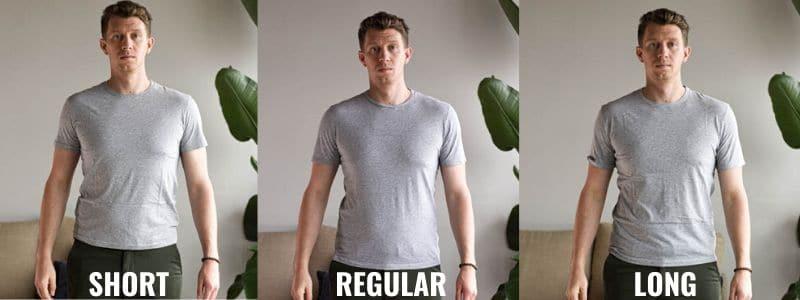 asket shirt sizes short regular and long