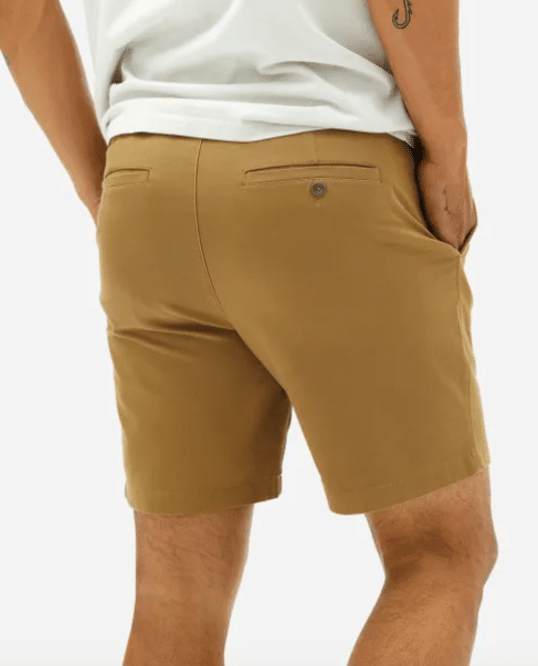 Everlane Air Chino Short