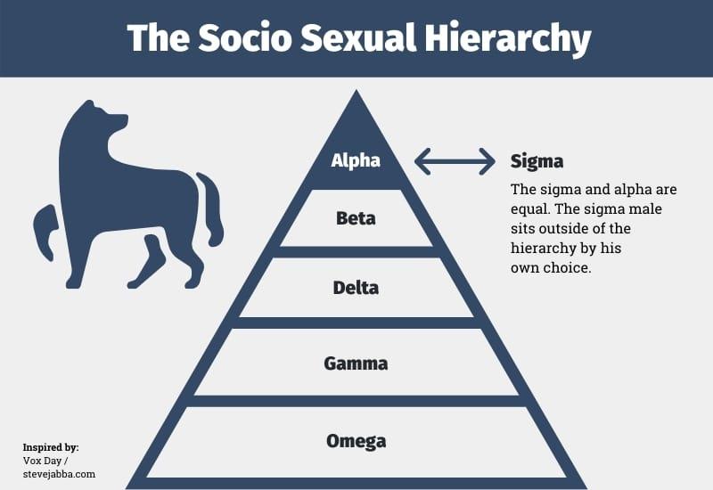 The Socio Sexual Hierarchy