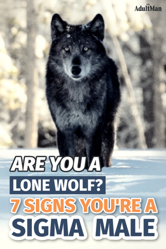 Understanding the Lone Wolf: Are You a Sigma Male?