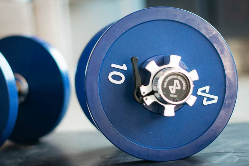Tempo Studio california dumbells with ten pounds